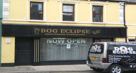 dog grooming doggy daycare dundalk